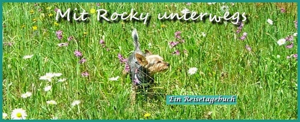 Mit Rocky unterwegs