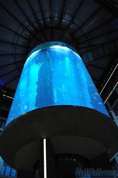 aquadom berlin germany largest cylinder aquarium (1)