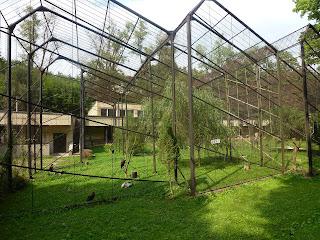 """""""Kaunas Zoo, de moeite waard"""" 04-09-2011  Toegangsprijs erg goedkoop, er was voldoende te zien. De wandelpaden zijn niet best op sommige plaatsen. Ik ben er twee maal geweest en zou er ooit nog wel eens gaan kijken."""