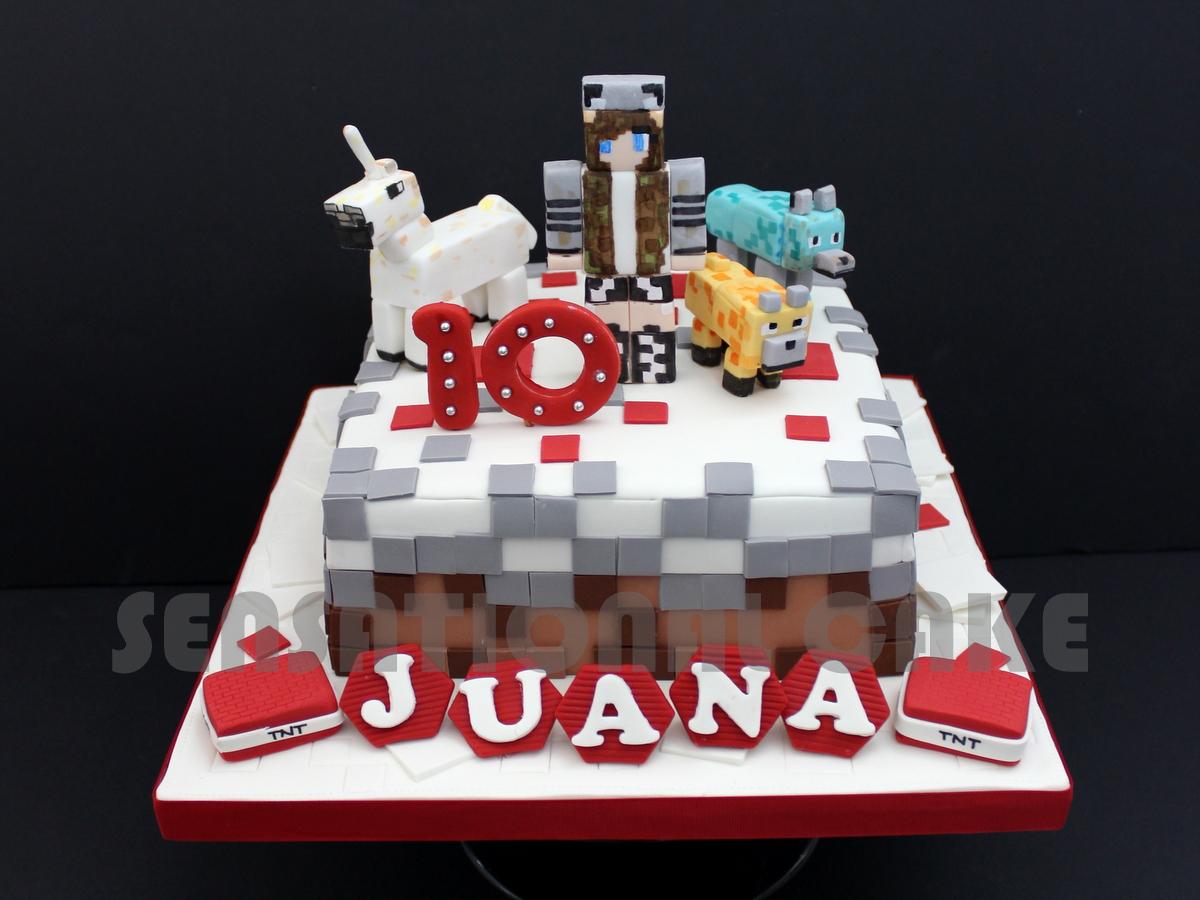 The Sensational Cakes Mine Craft Theme Figurines Singapore