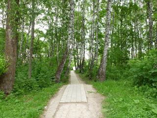 Комсомольский парк, дорога к роднику