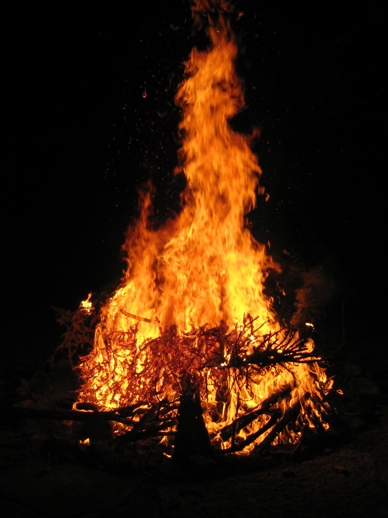 christmas trees to be burned saturday