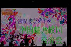 20160805 中国魅力访问团
