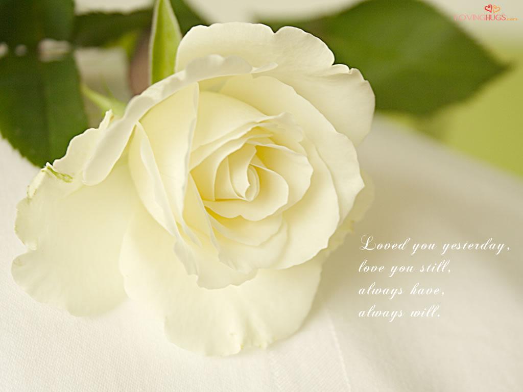 http://1.bp.blogspot.com/-WwXyE2Hr5ys/TnsWjMUhcMI/AAAAAAAAAlE/bwVRR5XoHeo/s1600/love-wallpaper33.jpg