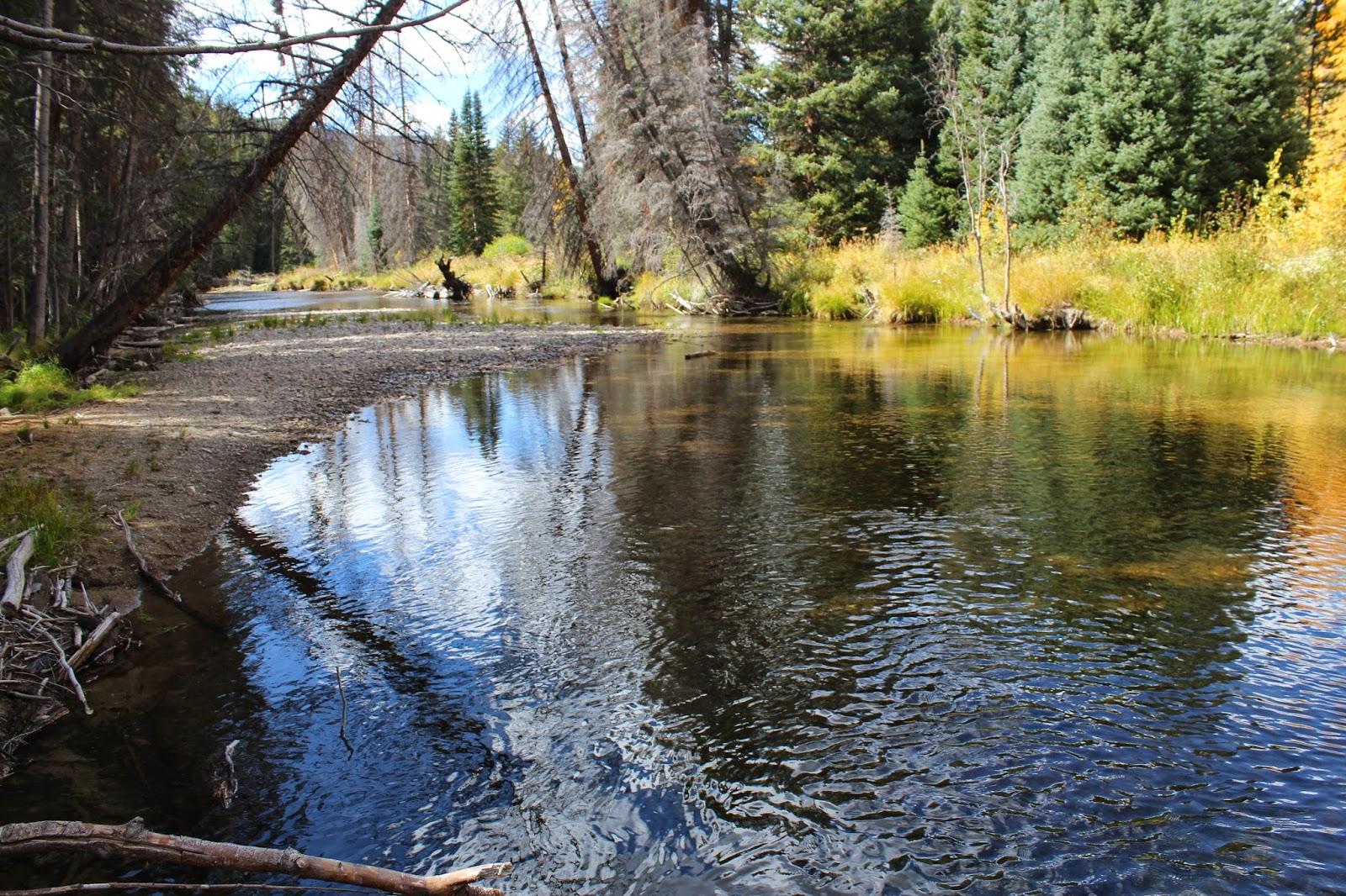 Roaring fork river trail for Roaring river fishing