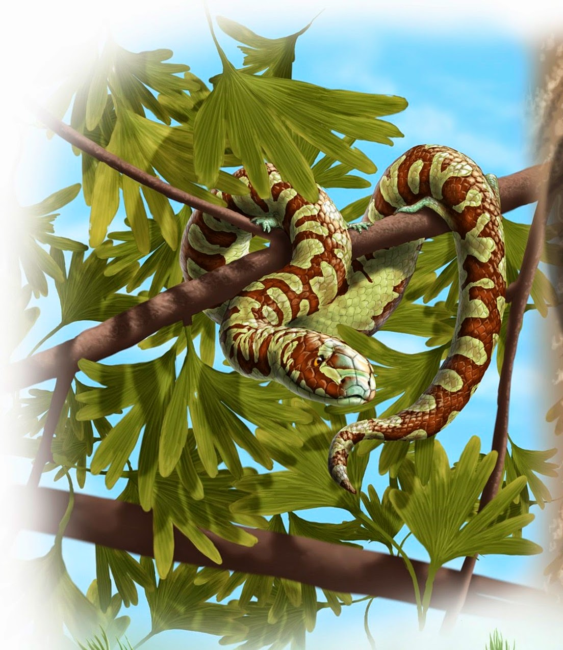 The Oldest Known Snakes from the Middle Jurassic Lower Cretaceous provide insights on Snake Evolution  Nature Communications     DOI          ncomms