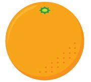 オレンジ日記