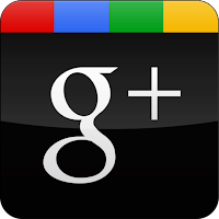 Contact Google +