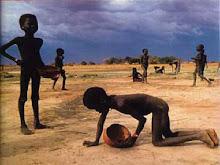 L'eau le nouveau pétrole. Inégalité de consommation d'eau dans le monde.