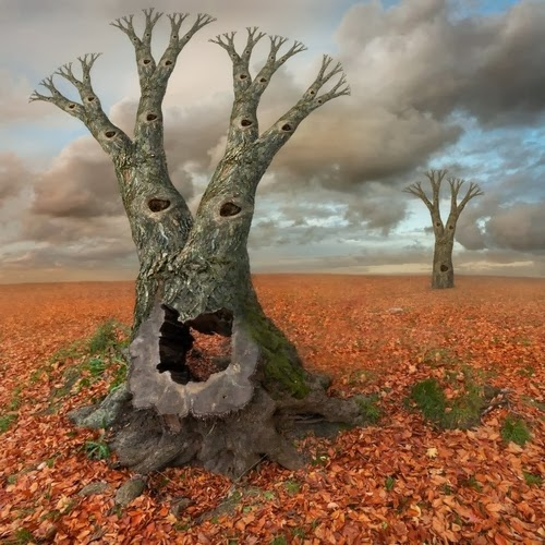 01-Autumn-Photographer-Dariusz-Klimczak-Surreal-Dream-World-www-designstack-co