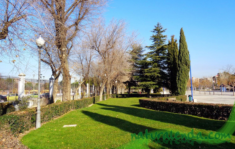 jardín romántico parque liana