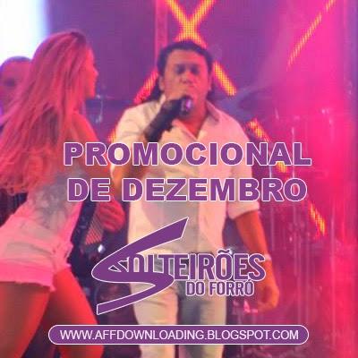Solteirões do Forró – Promocional de Dezembro – 2014 – Rep. Novo!!