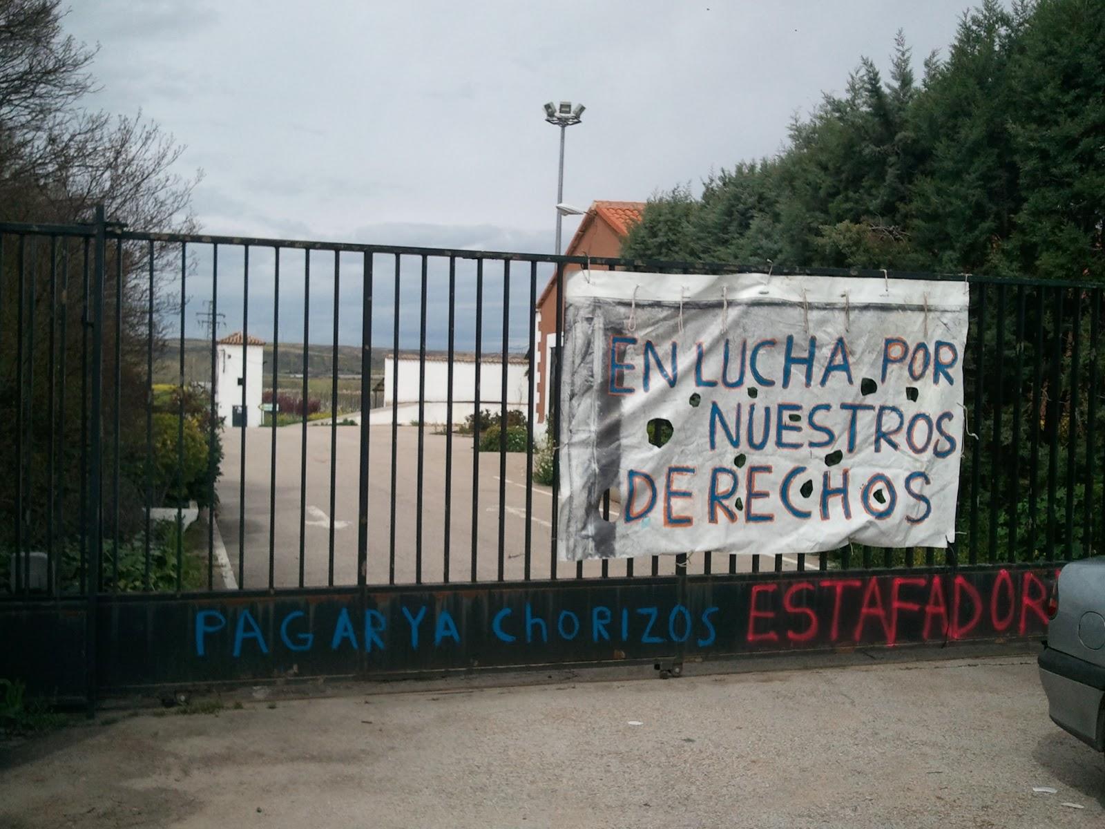 Uni n comarcal las vegas ccoo los trabajadores de viveros - Vivero aranjuez ...