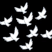飛んでいる白い鳩の群れのイラスト