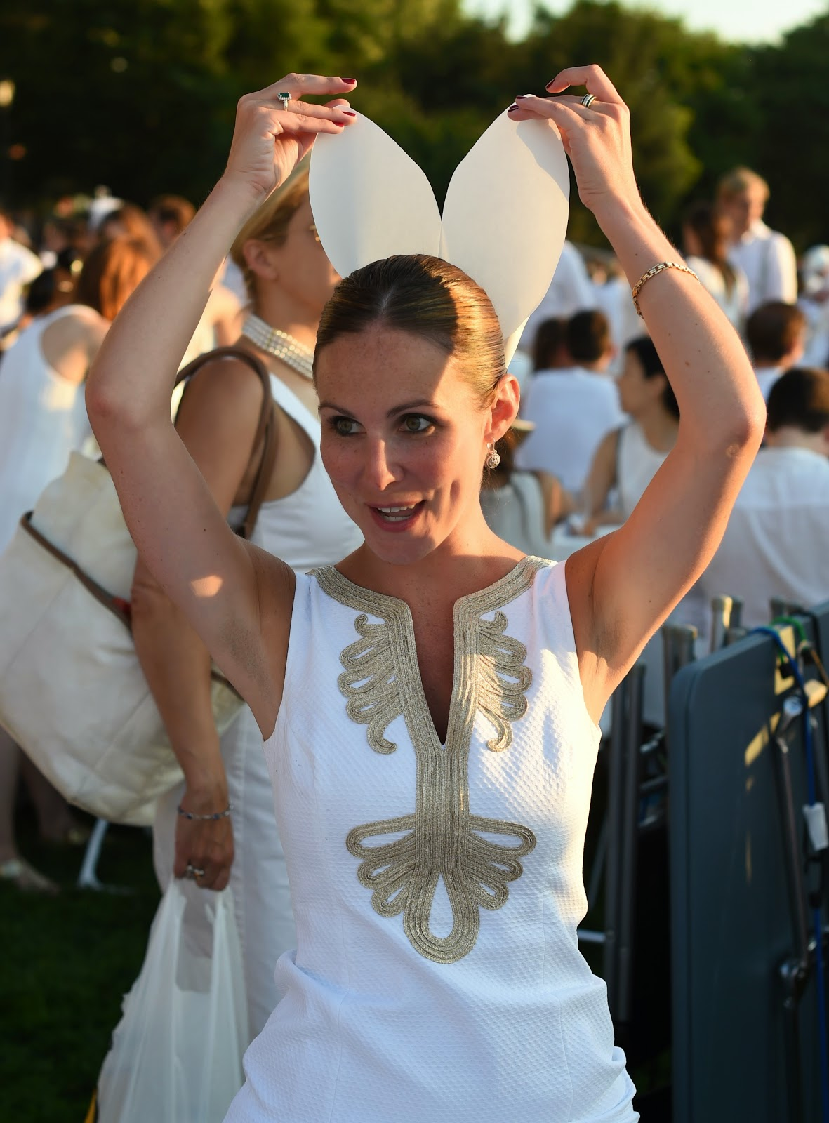 Diner en Blanc: the World's Largest Picnic HD Pictures