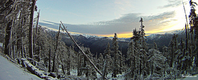 snowshoe hurricane ridge