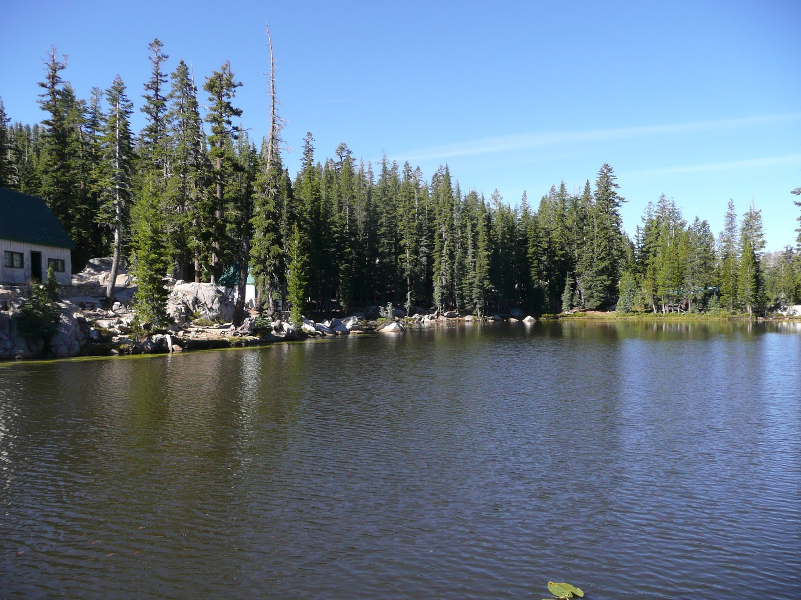 Northern california trout a new lake and a not so new lake for Mosquito lake fishing