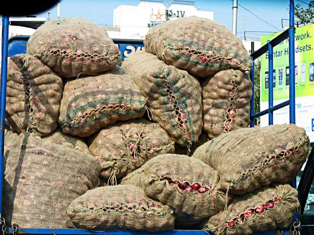 closeup of sacks of onions