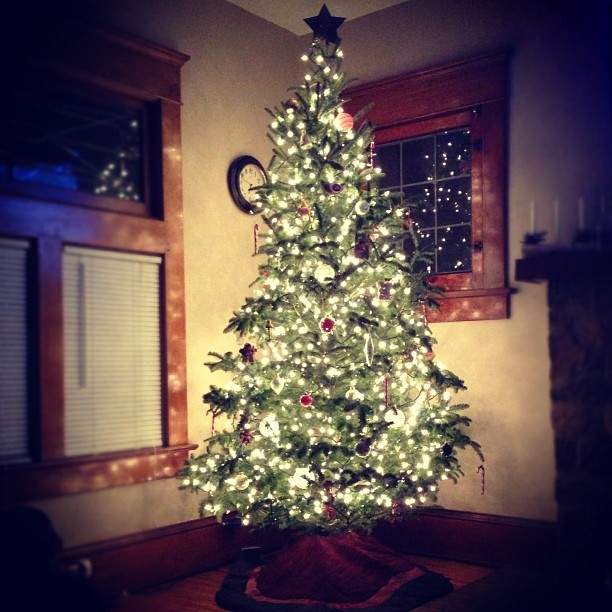 Saturday We Went Out To Breakfast With A Bunch Of Family For My Uncle Johns Birthday Party Later Some Friends Came Over And Lit The Tree Fire