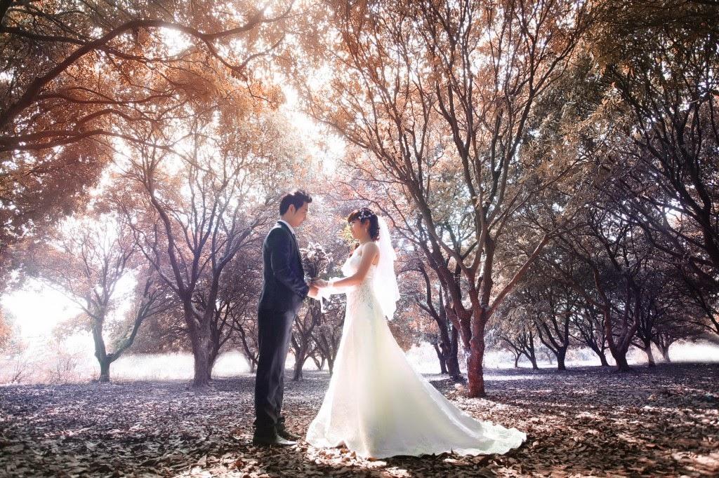 Địa điểm chụp ảnh cưới đẹp ở Hà Nội: Vườn nhãn Gia Lâm3