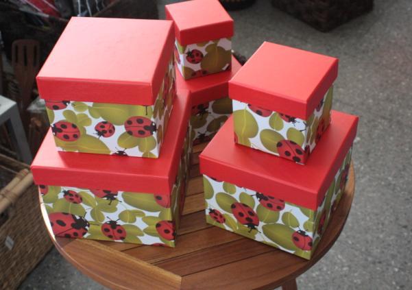 Cajas para ordenar mayo nivel muebles de jard n y regalos - Cajas para ordenar ...