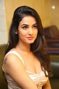 Sonal Chauhan sizzling photo shoot-thumbnail-1