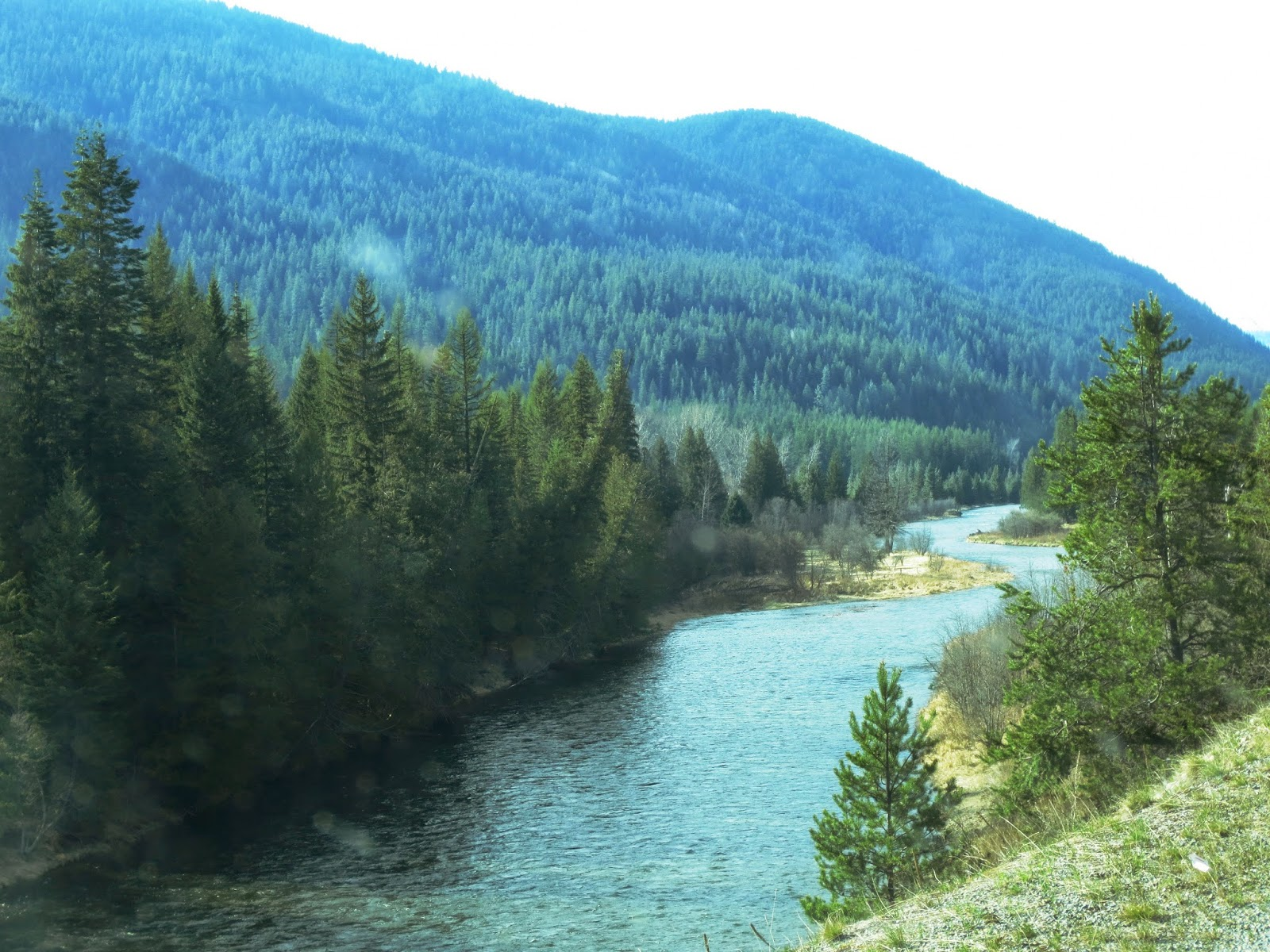 Moyie River fly fishing