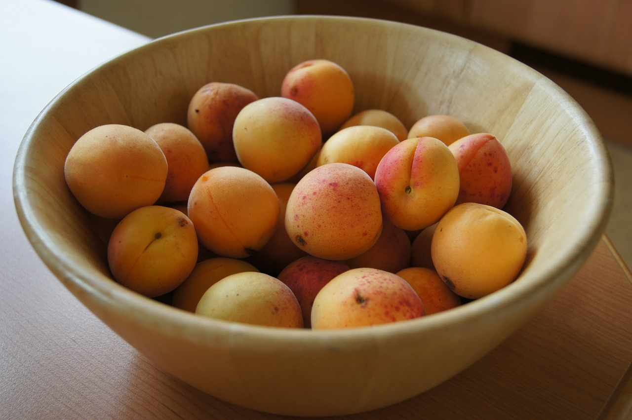 A Wise Woman Builds Her Home: Fresh & Healthy Apricot Sorbet