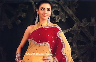 Aamna Sharif Hot Sexy Photo 16