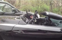 Batman en un Lamborghini