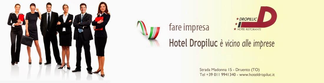 HOTEL DROPILUC VICINO A TORINO, VENARIA REALE, JUVENTUS STADIUM
