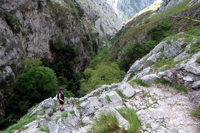 Canal de Tejo - Bulnes - Asturias