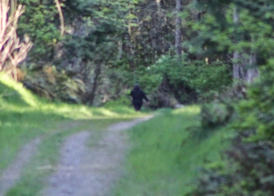 Ed Waterman Bigfoot Hoax