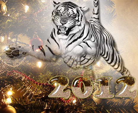 happy new year 2012 wallpaper