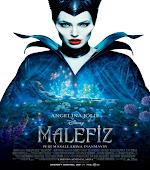Malefiz   Maleficent   2014   BRRip XviD   T�rk�e Dublaj