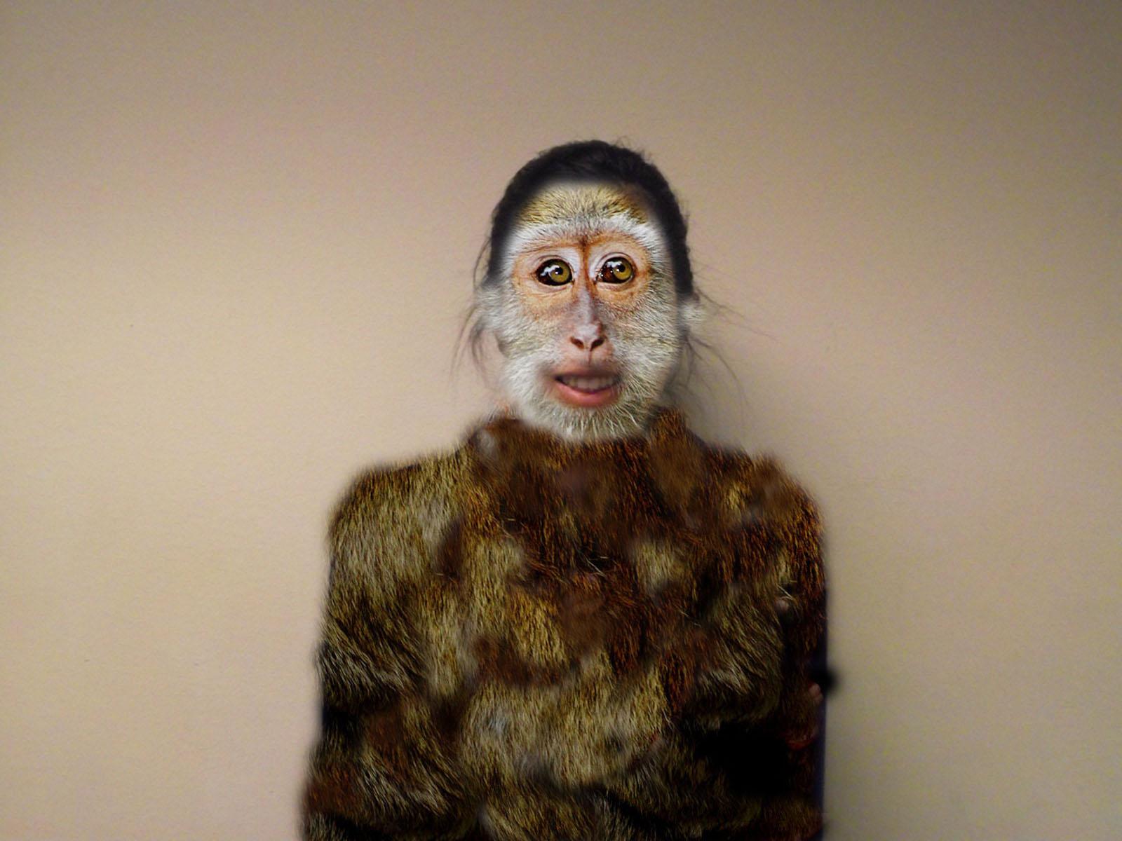 Макияж обезьянки