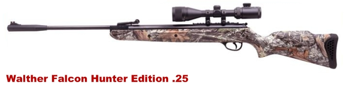 manasota air guns walther falcon hunter edition 25 caliber rh manasotaair blogspot com Falcons Owner Reaction Arthur Blank First Wife