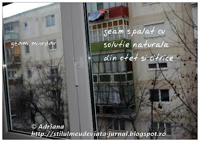 geam spalat cu solutie naturala din otet si citrice
