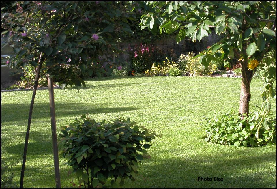 Un giardino di perenni in ticino avvicinandosi al massimo for Aiuole perenni