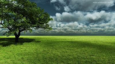 Doğa HD Arka Plan