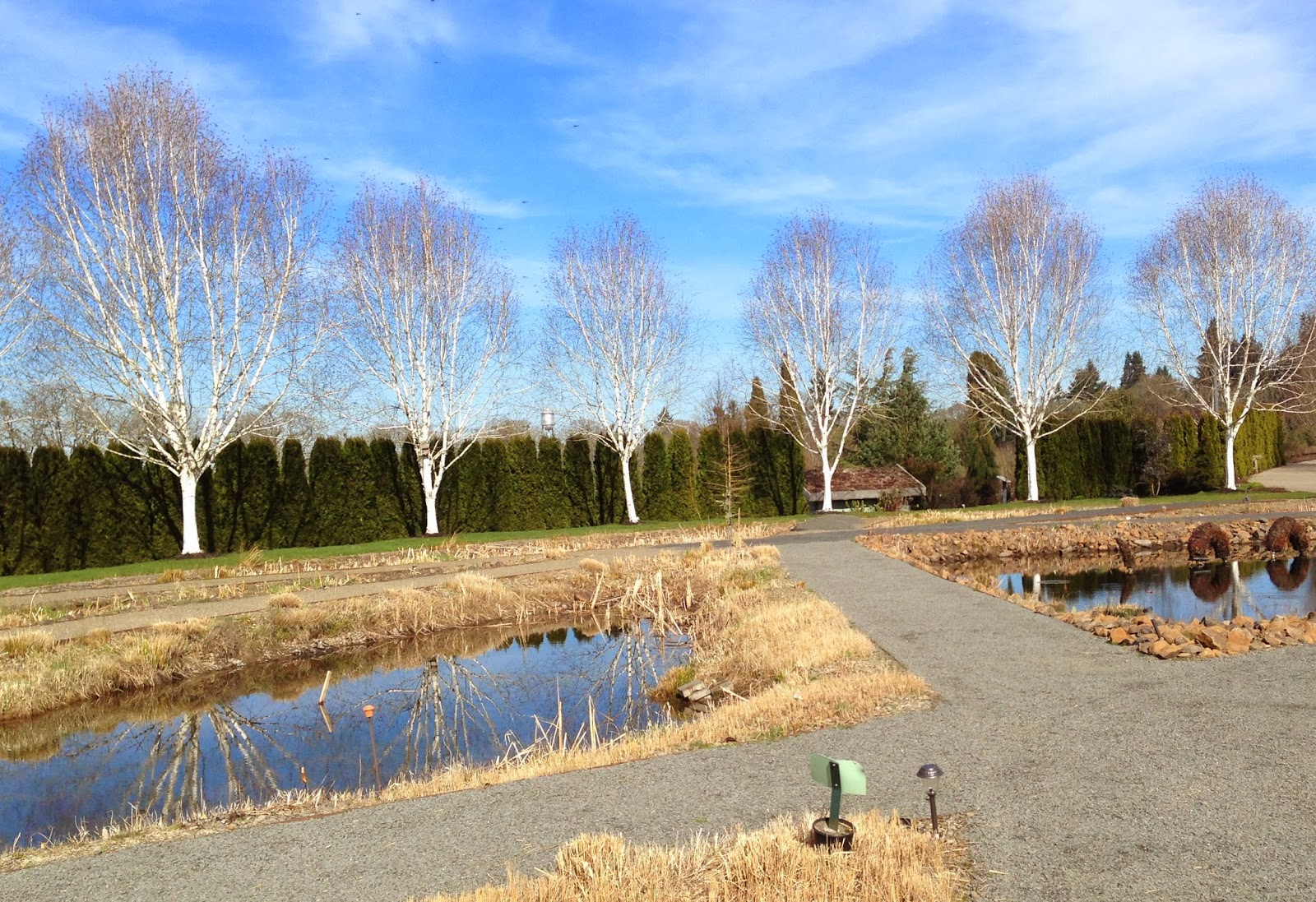 venture out oregon garden silverton or