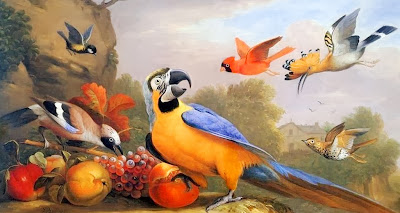bodegones-exoticos-con-aves