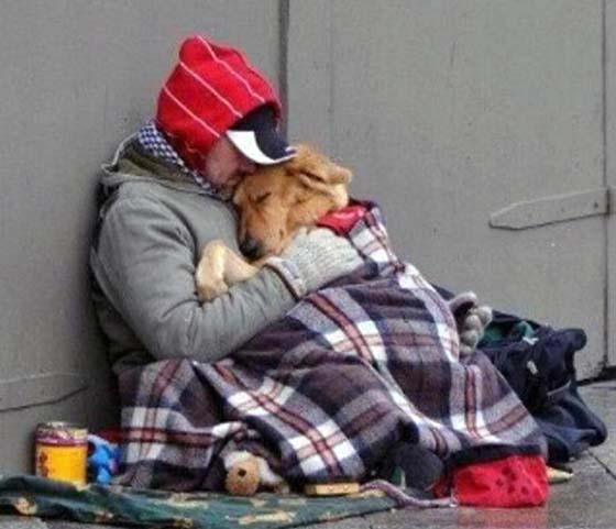Οποιος δεν μπορεί να αγαπήσει ένα ζώο, δεν μπορεί να αγαπήσει τίποτα