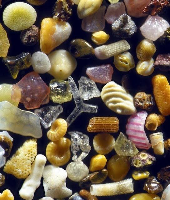 кристаллы под микроскопом