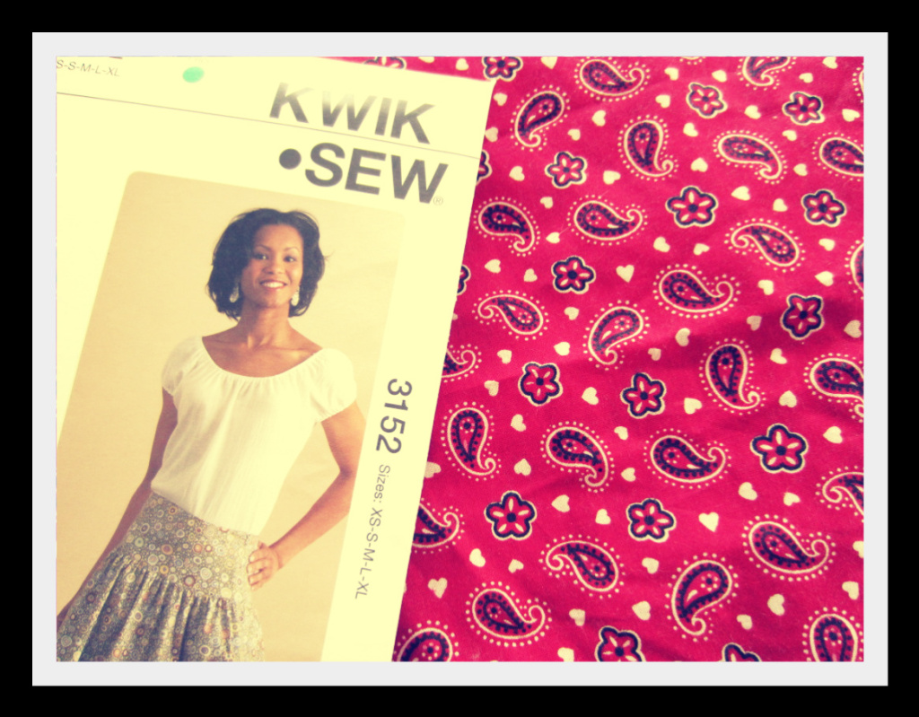 Rayon dreams in a cheesecake world and sew on and sew on sewing projects get me really excited last christmas break i found an a line skirt pattern suitable for sewing idiots like me i went crazy sewed about jeuxipadfo Gallery