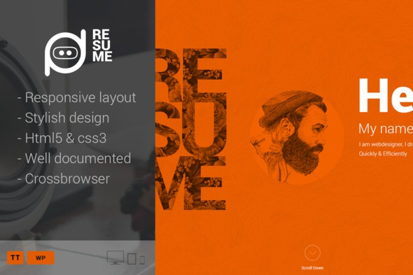 Premium WordPress Resume Theme