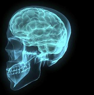 Como tener buena memoria, concentracion y un cerebro sano