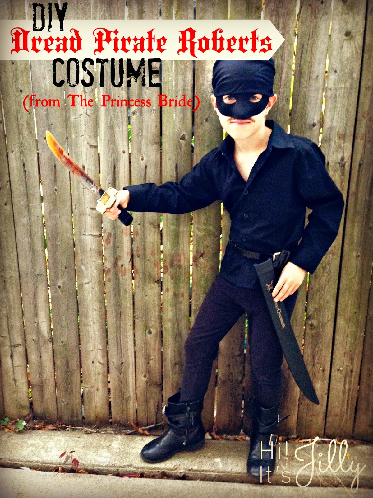 Princess Bride Westley Costume