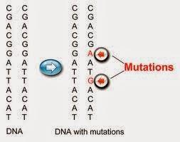 Đột biến gen -Tài liệu ôn thi bác sĩ nội trú - Môn Y sinh học Di truyền