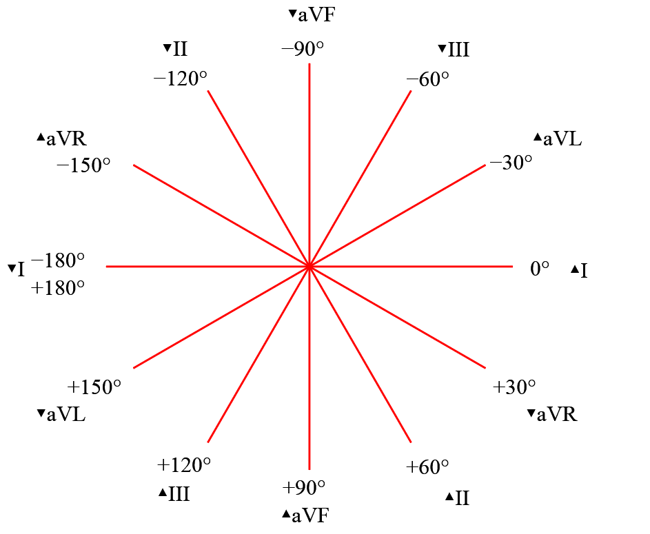 Hexaxial_reference_system, electrocardiograma